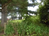 Photo 2025 E Wharton Rd Lowell, AR 72745