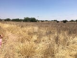 Foto Land buy en La Punta, Cosío, terreno 4800 m²