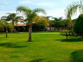 Terraza Jardin Guadalajara Jalisco Eventos Trovit