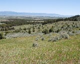 Photo Building Land in Willow Creek Reservoir,...